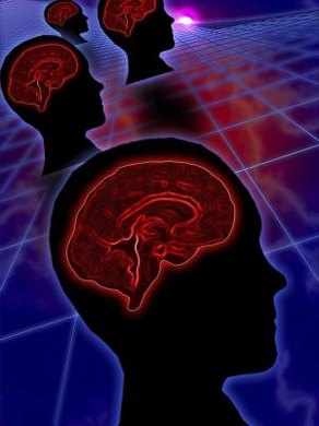 The left hemisphere of your brain aids your ability to learn a new language.