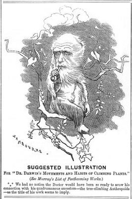 Darwin's evolutionary theories exposed him to fierce ridicule from his critics.