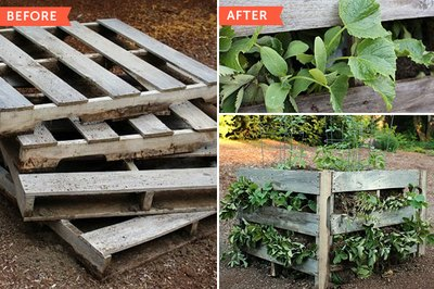 Building raised beds from pallets like this one is a relatively simple weekend project.