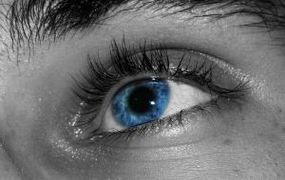 Eye color is an inherited physical trait.