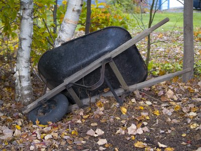 Try not to tip your partner out of the wheelbarrow when racing.
