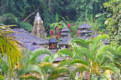Commercial Opportunity in Bali