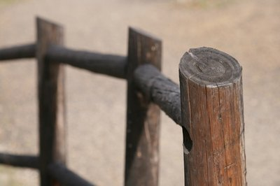Trimmed trees can be used for fence posts.
