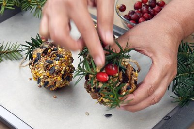 Decorate the birdseed balls.