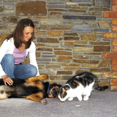 The staph germs can be spread from pets to people.