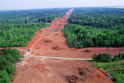 Clear cutting forests disrupts habitats.
