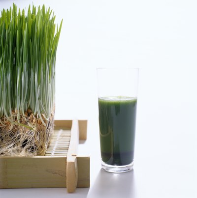 Spirulina drink next to wheatgrass plant