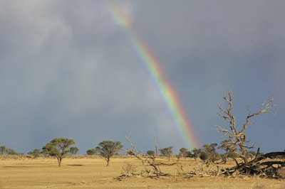 Rainbow and storm clouds over the Kalahari Desert, South Africa