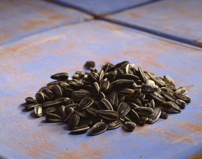 Are Sunflower Seeds Bad for You?