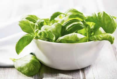 the basil used in many Italian dishes is a native herb