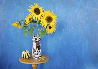Sunflowers in a vase on a table in a blue room.