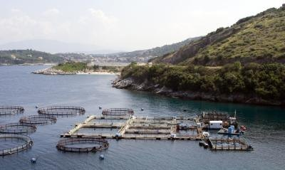 A fish farm in coastal waters.