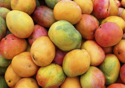 A large pile of ripe mangoes.