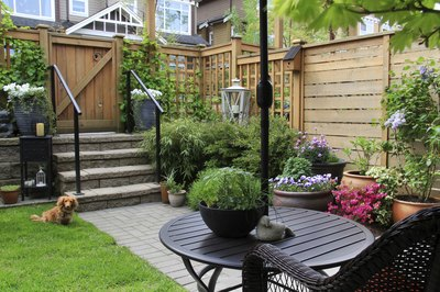 A wooden fence, trellis and potted plants in a private backyard.