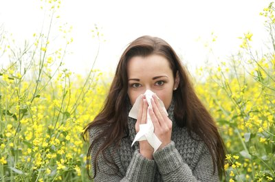 Allergies can cause a loss of productivity.