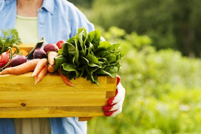 Gardener holding a crate of fresh vegetables