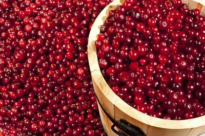 Drinking unsweetened cranberry juice can help emulsify fat.