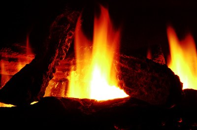 Keep a dog away from hazards, such as an open fireplace, during a seizure.