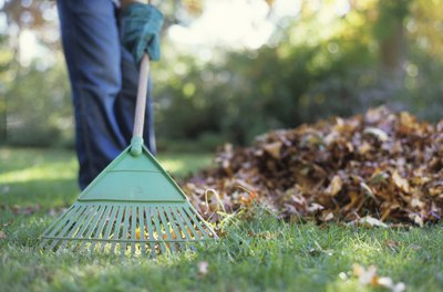 Deed restrictions may require that you keep your yard looking good.