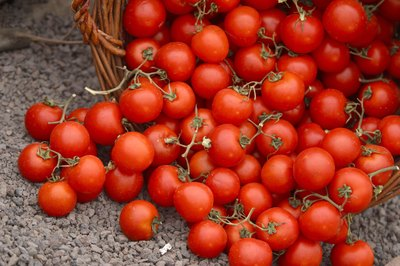 Raw tomatoes are quite healthy, but may trigger heartburn.