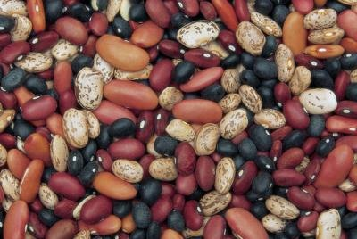 Purchase beans and rice in bulk quantities for long-term storage.