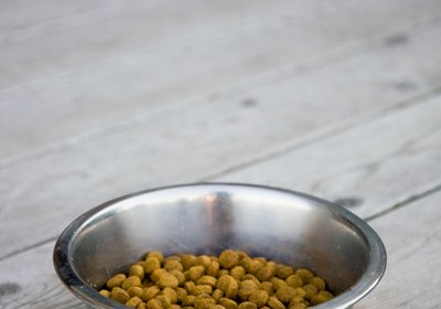 How Vitamin E is Used as a Preservative in Dog Food