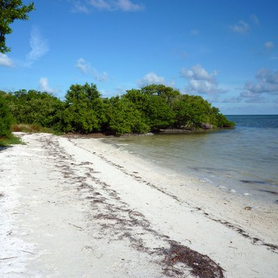 Beaches At Islamorada Florida Usa Today