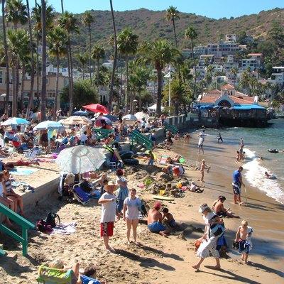 Catalina Island Day Cruises USA Today - Catalina cruises
