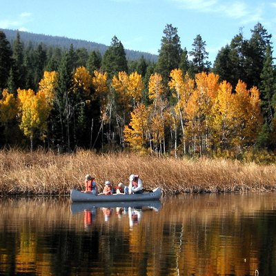 Upper Klamath Lake Canoe Trail Populus Tremuloides Fall Foliage Pinus Ponderosa Subsp And Abies Concolor