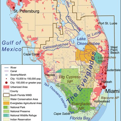 What Is a Good Place to Stay for Visitors to the Everglades  USA