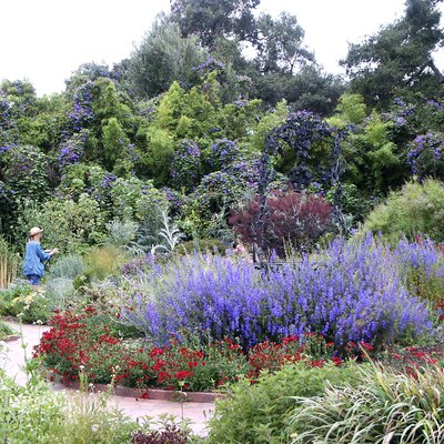 Best Time To Visit The Huntington Library And Gardens, Pasadena | USA Today