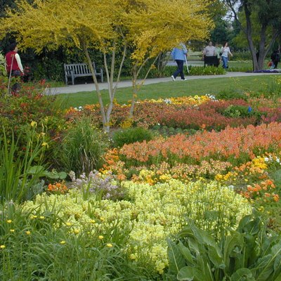 Flowers At Huntington Library. Herb Garden ...