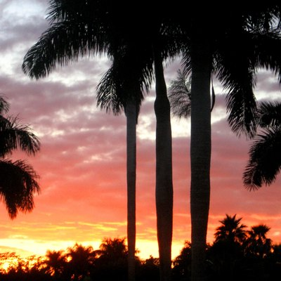 Public Golf Courses Near Weston Florida Usa Today
