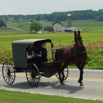 Amish Tourism In Texas Usa Today