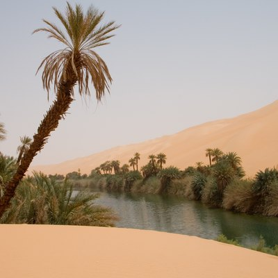 Famous Deserts In Africa USA Today - African desert names