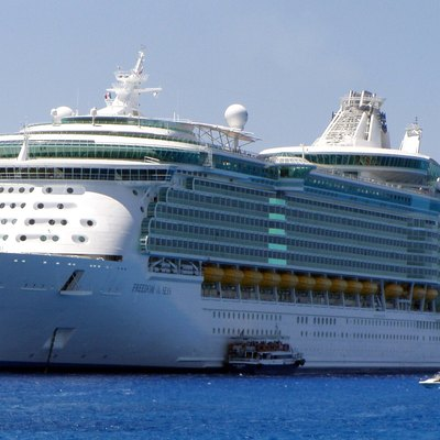 Differences Between Carnival Royal Caribbean Cruise Lines USA - Age of carnival cruise ships