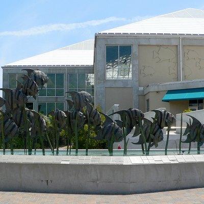 Nearest Aquarium | Aquariums Nearest To Dunn North Carolina Usa Today