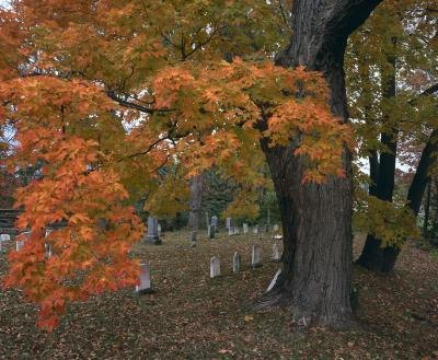 Quaker funerals follow the tradition of simplicity.