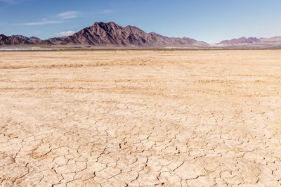 Deserts exhibit all the characteristics of a dry climate.