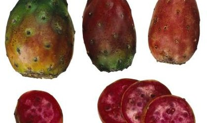 How to Tell If Mexican Cactus Pears Are Ripe
