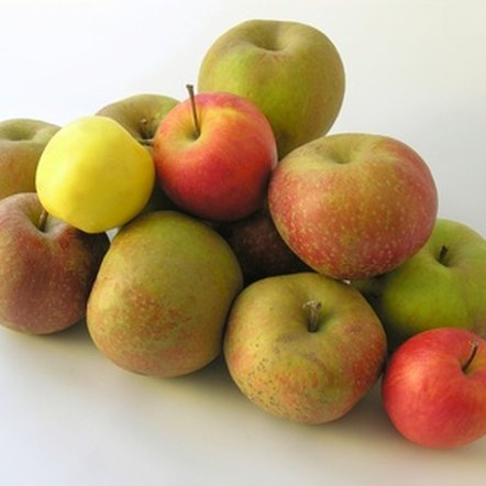 Apples are high in fiber, which aids in digestion.
