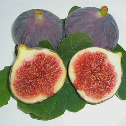Eat figs as a rich source of fiber.