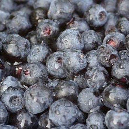Juicing your own blueberries helps ensure your juice is not blended with other fruits.