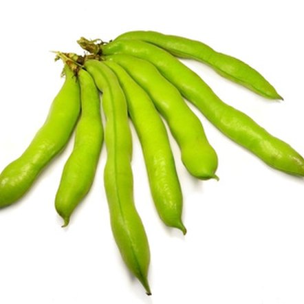 Fava beans are dense with vitamins and minerals.