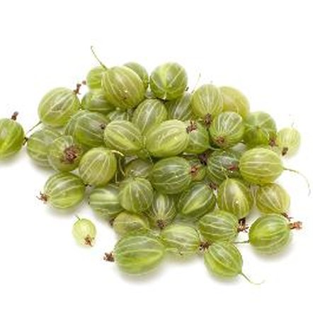 Gooseberries are an excellent source of dietary fiber.