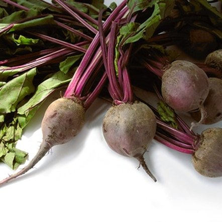 Beets are not a source of starch.