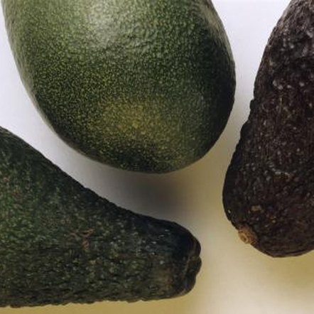 Pollination between avocado varieties with A-type and B-type flowers boosts production.