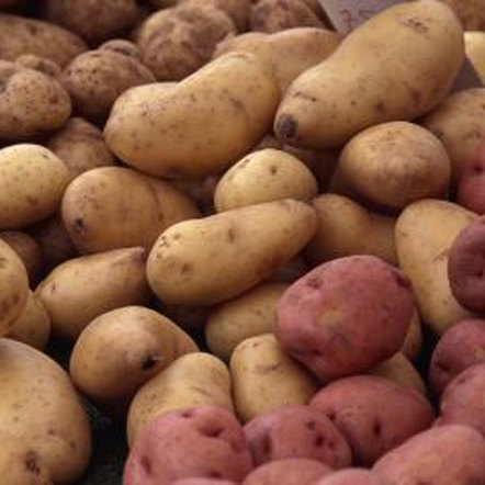 Red potatoes can be harvested after about 10 weeks.