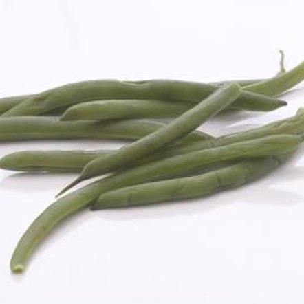 Beans thrive in hydroponic systems.