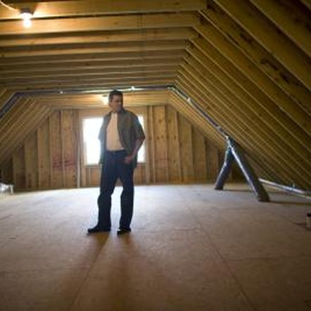 An attic is susceptible to insects and dust mites.